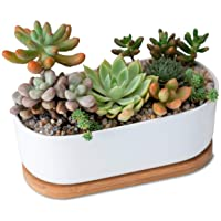 White Ceramic Planter with Removable Bamboo Tray