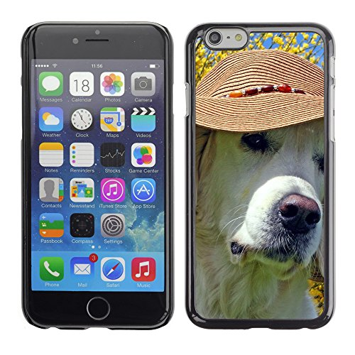 "Premio Sottile Slim Cassa Custodia Case Cover Shell // V00003514 labrador portant chapeau de plage // Apple iPhone 6 6S 6G 4.7"""
