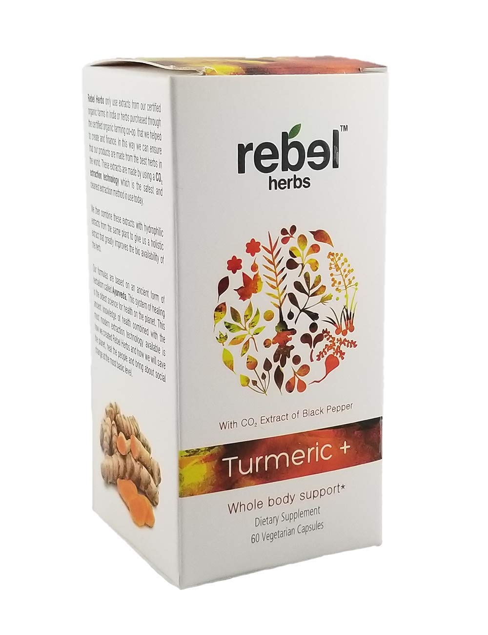 Rebel Herbs RH1290 Turmeric For Body Support, + 60 capsules by Rebel Herbs (Image #1)