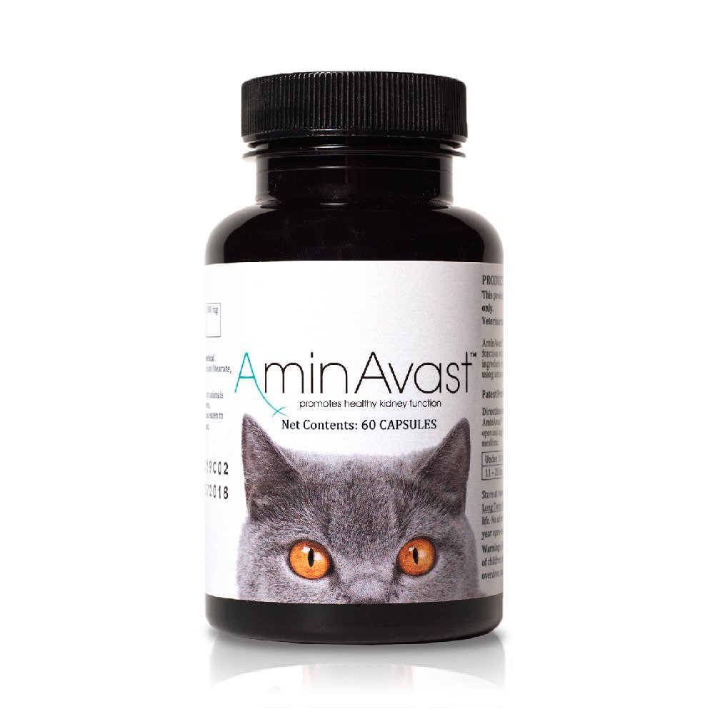 AminAvast Kidney Support Supplement for Cats and Dogs, 300mg - Promotes and Supports Natural Kidney Function - Supports Health and Vitality - Easily Administered - 60 Sprinkle Capsules