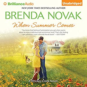 When Summer Comes Audiobook