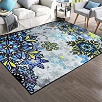 Soft Nylon Area Rugs Contemporary Living & Bedroom Indoor/ Outdoor Shag Rug 8mm Pile Height with Rubber Backing, Anti-Static, Water-Repellent Printed Rugs Ice, 3.3'x5