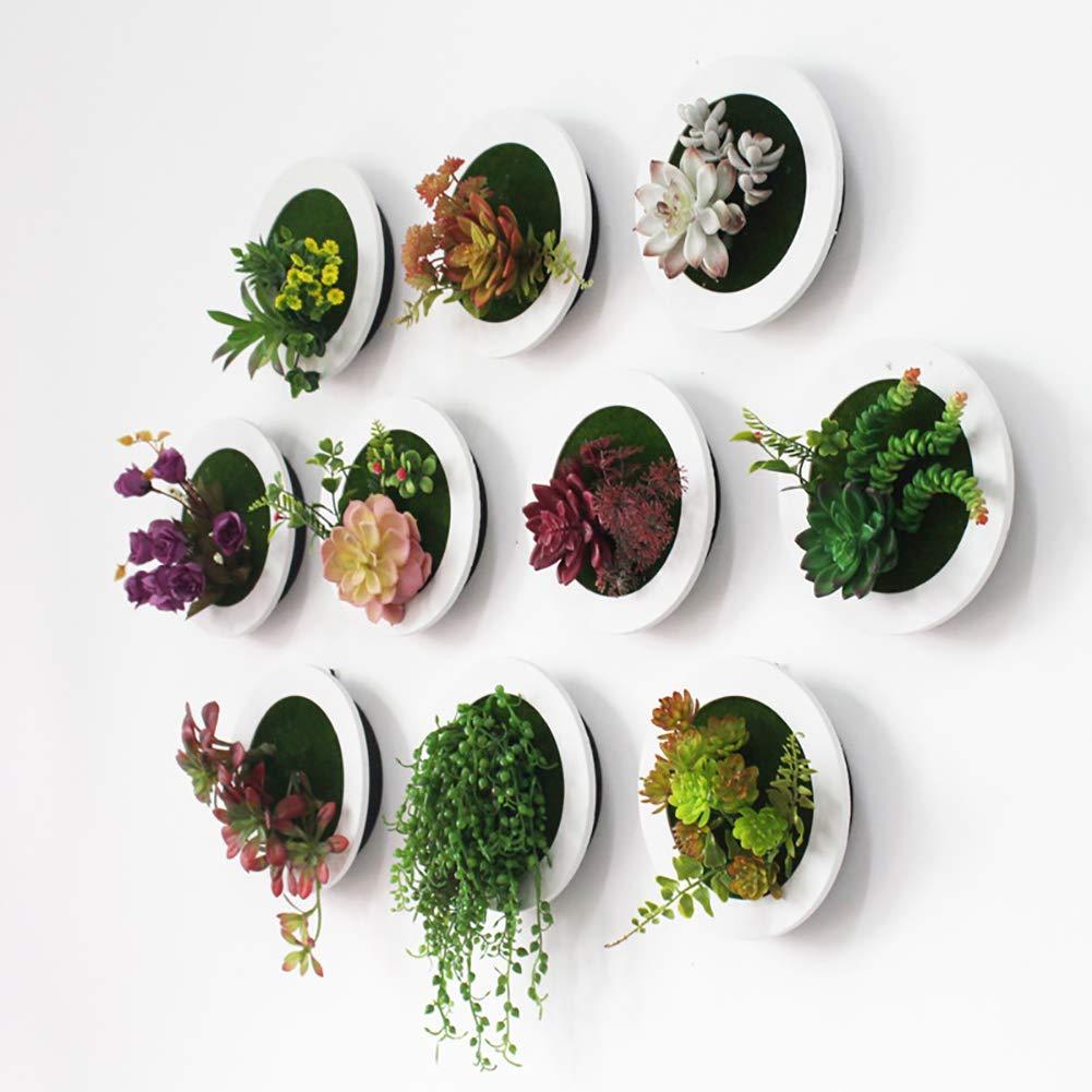Amazon.com: Minions Boutique Artificial Succulent Plants ...