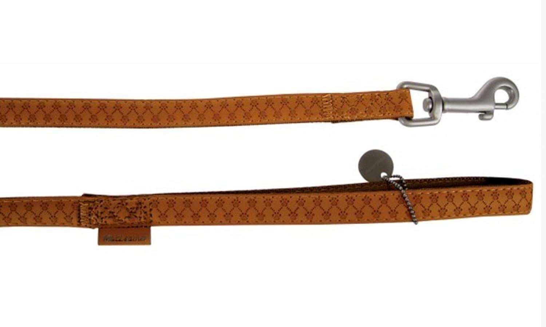 b3e09d778130 Zolux Mac Leather Laisse pour Chien Jaune 25 mm  Amazon.fr  Animalerie
