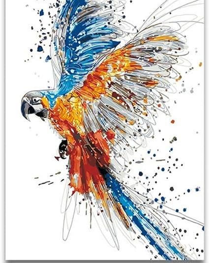Nessuna Cornice Disegni Da Colorare Dai Numeri Acquerello Uccelli Animali Che Volano Aquila Digitale Pittura Ad Olio Da Numeri Immagini Animali Pittura Disegnata Da Me Stesso Amazon It Casa E Cucina