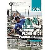La situation mondiale des pêches et de l'aquaculture 2016 (SOFIA): Contribuer à la sécurité alimentaire et à la nutrition de tous (The State of World Fisheries and Aquaculture) (French Edition)