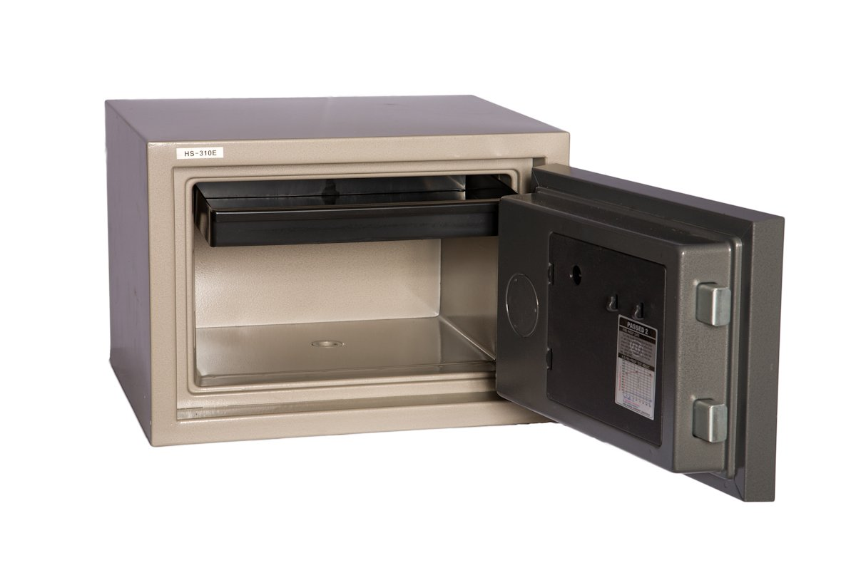 Hollon HS-310E 2 Hour Fire Proof Electronic Home Safe by Hollon