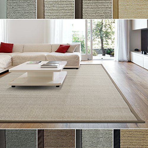 Natural Contemporary Rug (iCustomRug Zara Contemporary Synthetic Sisal Rug, Softer Than Natural Sisal Rug, Stain Resistant & Easy To Clean . Beautiful Border Rug in Beige 6 Feet x 8 Feet (6' x 8'))