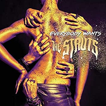 Image result for everybody wants the struts