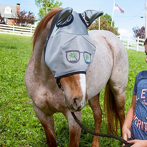 Funny Face Fly Masks For Horses
