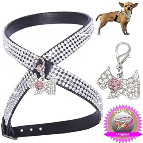 Woof Style S negro con colgante Chihuahua perro brillantes Vajilla ...