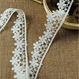 Vintage Embroidered Lace Edge Trim Ribbon Wedding Applique DIY Sewing Craft (M-5yards, White)