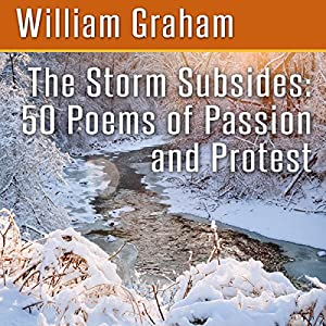 The Storm Subsides Audiobook