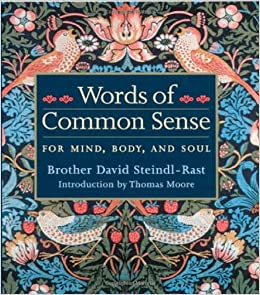 Words of common sense david steindl rast thomas moore words of common sense david steindl rast thomas moore 9781890151980 amazon books fandeluxe Choice Image