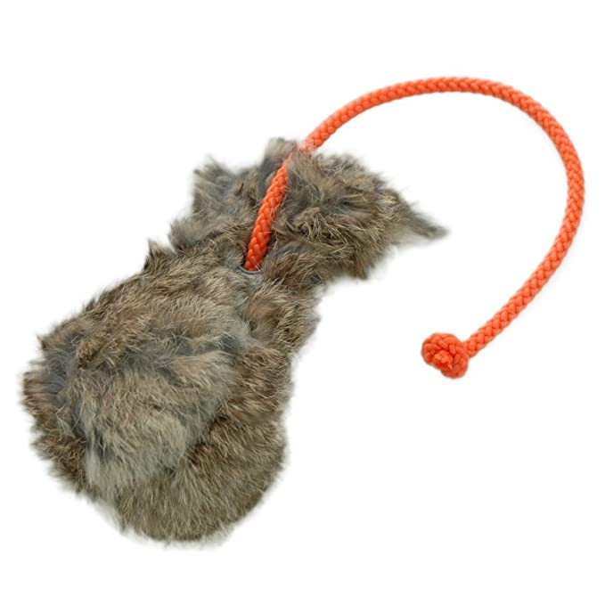 trains search and marker capacity extra-long rope ideal for fetch training Dummy ball 150g dog training toy floatable robust material