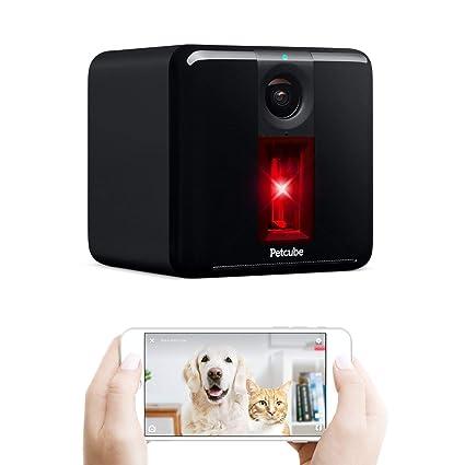 Amazon.com: Cámara inteligente para mascotas GOG Play ...