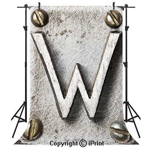 Letter W Photography Backdrops,Uppercase W Bolt Screws Industrial Kitsch Artful Symbolic Person Initials Image Decorative,Birthday Party Seamless Photo Studio Booth Background Banner 6x9ft,Silver Gold ()
