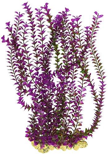 Sporn ACUS00995 - Pared de plantas