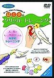 ばど美のクリッカートレーニング [DVD]