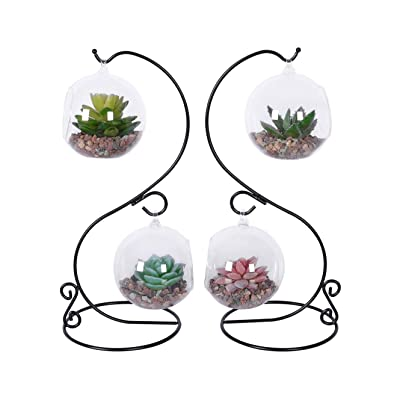 TQVAI 2 Pack Glass Air Plant Vase Terrarium Orbs with S Metal Stand, Black: Garden & Outdoor