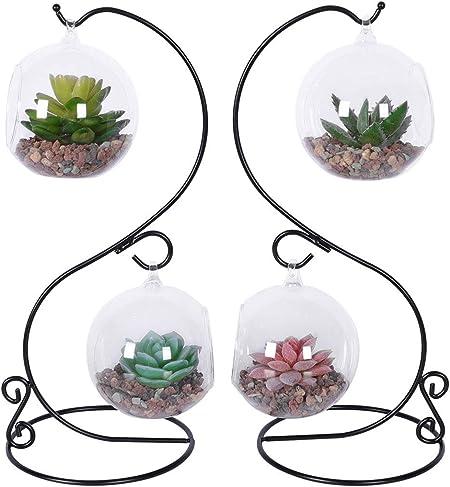 3 Pack Glass Hanging Air Plant Terrarium Vase Air Plant Pots Miniature Gardens