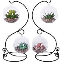 TQVAI 2 Pack Glass Air Plant Vase Terrarium Orbs with S Metal Stand, Black