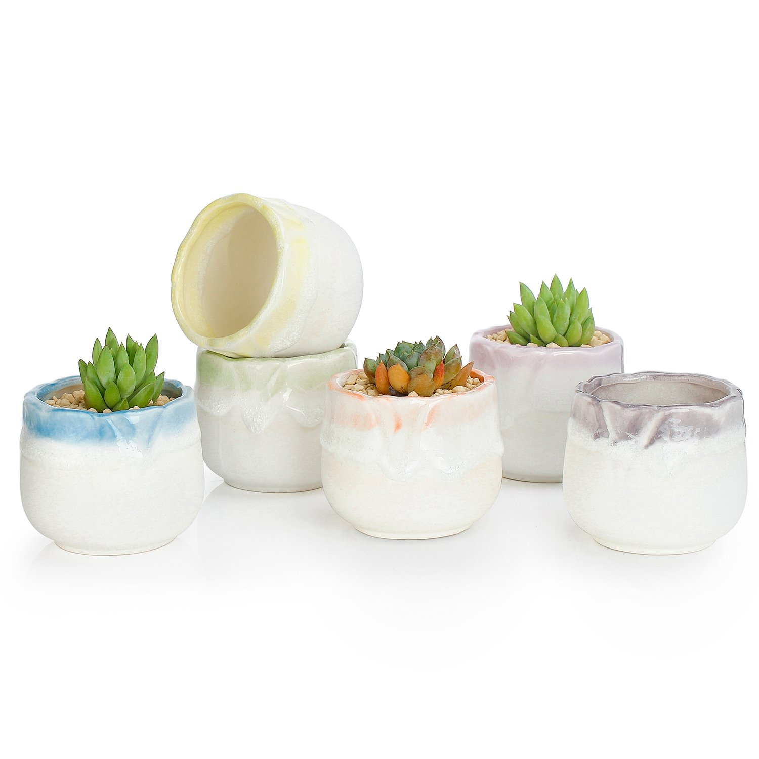 Greenaholics Succulent Plant Pots   2.4 Inch Flowing Glaze Ceramic Pots, Small Cactus Planters, With Drainage Hole, Six Colors, Set Of 6 by Greenaholics