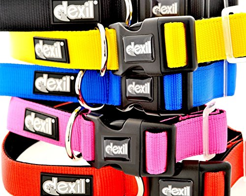 Dexil Elite Range Luxury Neoprene Padded Extra Strong Adjustable Small-Medium Pet Dog Collar (Candy Pink, Small-Medium 10-17inch x 1inch)