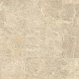 Formica Sheet Laminate 5 x 12: Parquet Latte