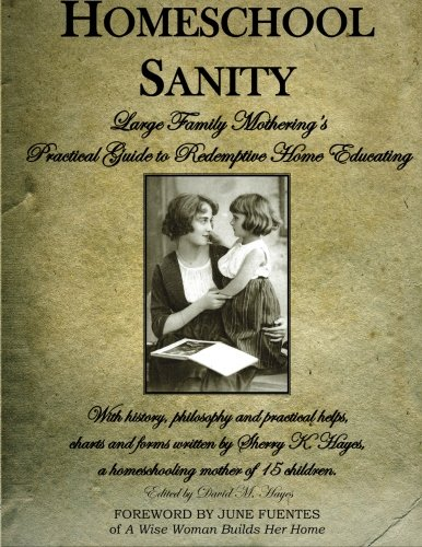 Homeschool Sanity: A Practical Guide to Redemptive Home Educating