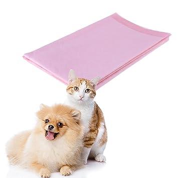 Everpert 10 almohadillas absorbentes de pañales para mascotas, cachorro, perro, gato, inodoro