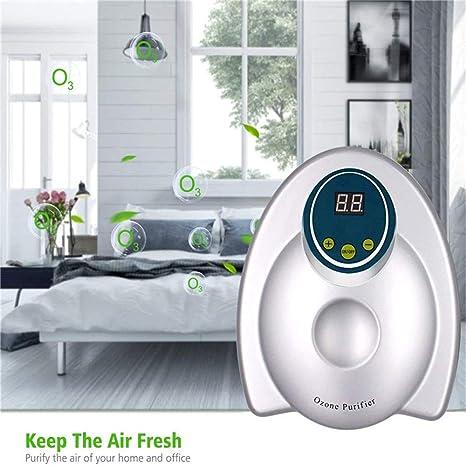 DSZZ Health Ozonizador Portátil Ciclo 400mg / h Generador de ozono ...