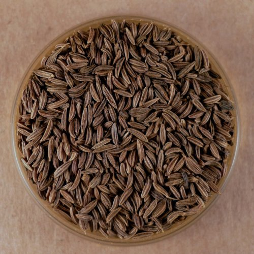 Caraway Seeds, Whole - 5 lbs Bulk by Spices For Less (Image #1)