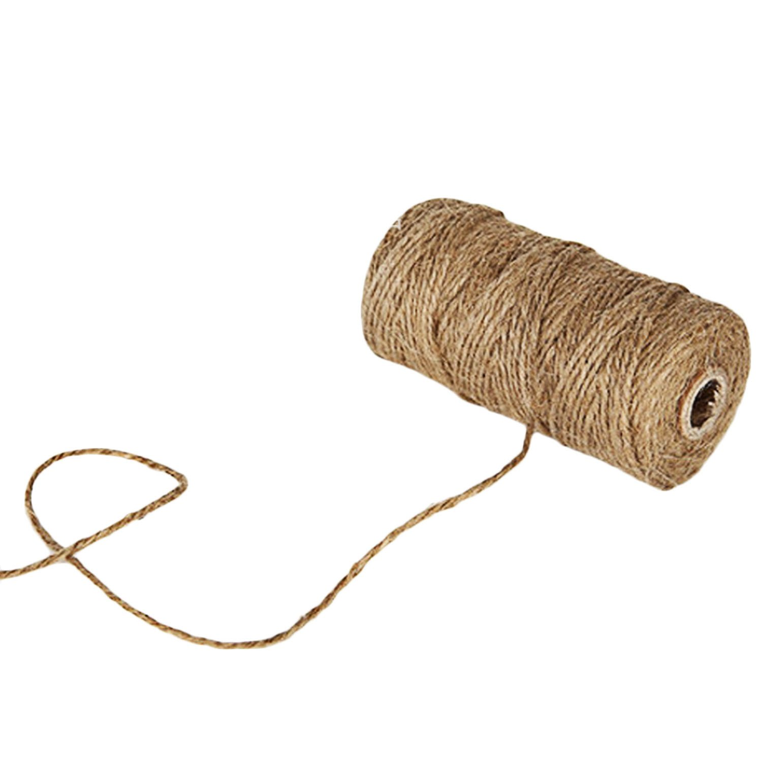 50 PCs//mini pinces photo pour Suspension photo//cadeau demballage//d/écoration festive//applications de jardinage Corde Photo 1 Rouleau Ficelle de Jute de 100M
