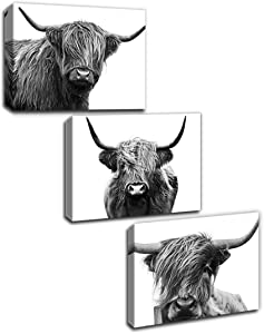 Gardenia Art Scottish Cow Canvas Print Animal Painting Wall Art for Living Room pet Shop Zoo Decoration 12x16 inch/Piece, unFramed, 3 Panels