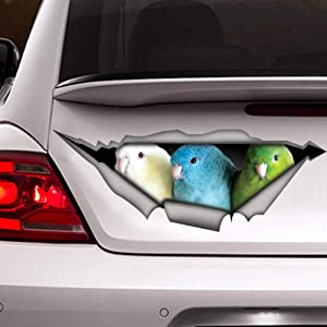 McC538arthy Decal Stickers for Cars Funny Window Decals Funny Cat Decal Funny Sticker Cat Car Sticker Gray Cat Self Adhesive Window Sticker for Van Truck Vehicle