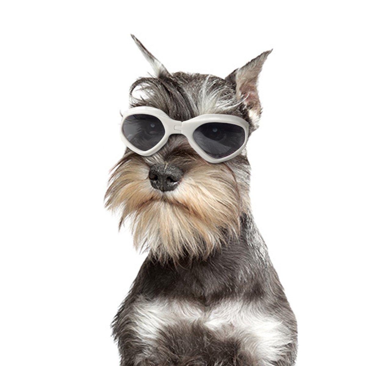 Petleso Pet Goggles, Stylish Dog Sunglasses for UV Stop Waterproof Windproof Anti-fog Eye Protection - White