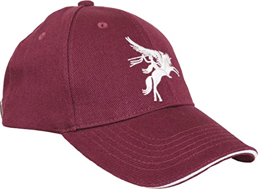 Epic Outdoor Gorra de béisbol Ashprint Limited V Pegasus: Amazon ...