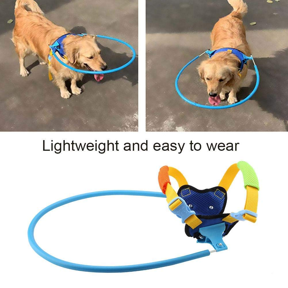 Large Blind pet Anti-Collision Ring, Blind Dog Predective Vest Eye Disease Dog Collision Prevention, Cataract Animal Predection Circle Guide Dog Disabled cat Dog Puppy Outdoor Walking