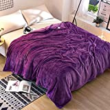 Znzbzt Solid color coral fleece blankets 1.2 single student hostels and plush linens 1.8 1.5 winter flannel blanket 2m ,180x200cm- solid-colored cloud mink plush, Purple