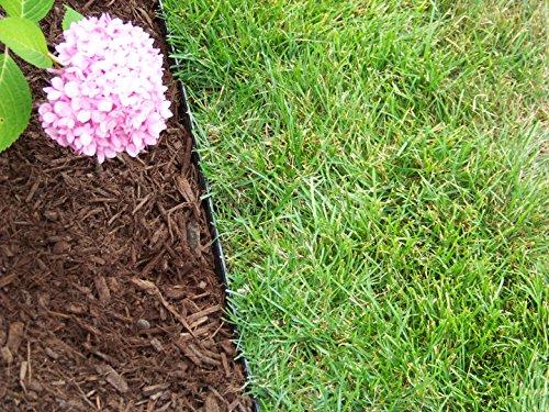 The 8 best garden edging for gravel