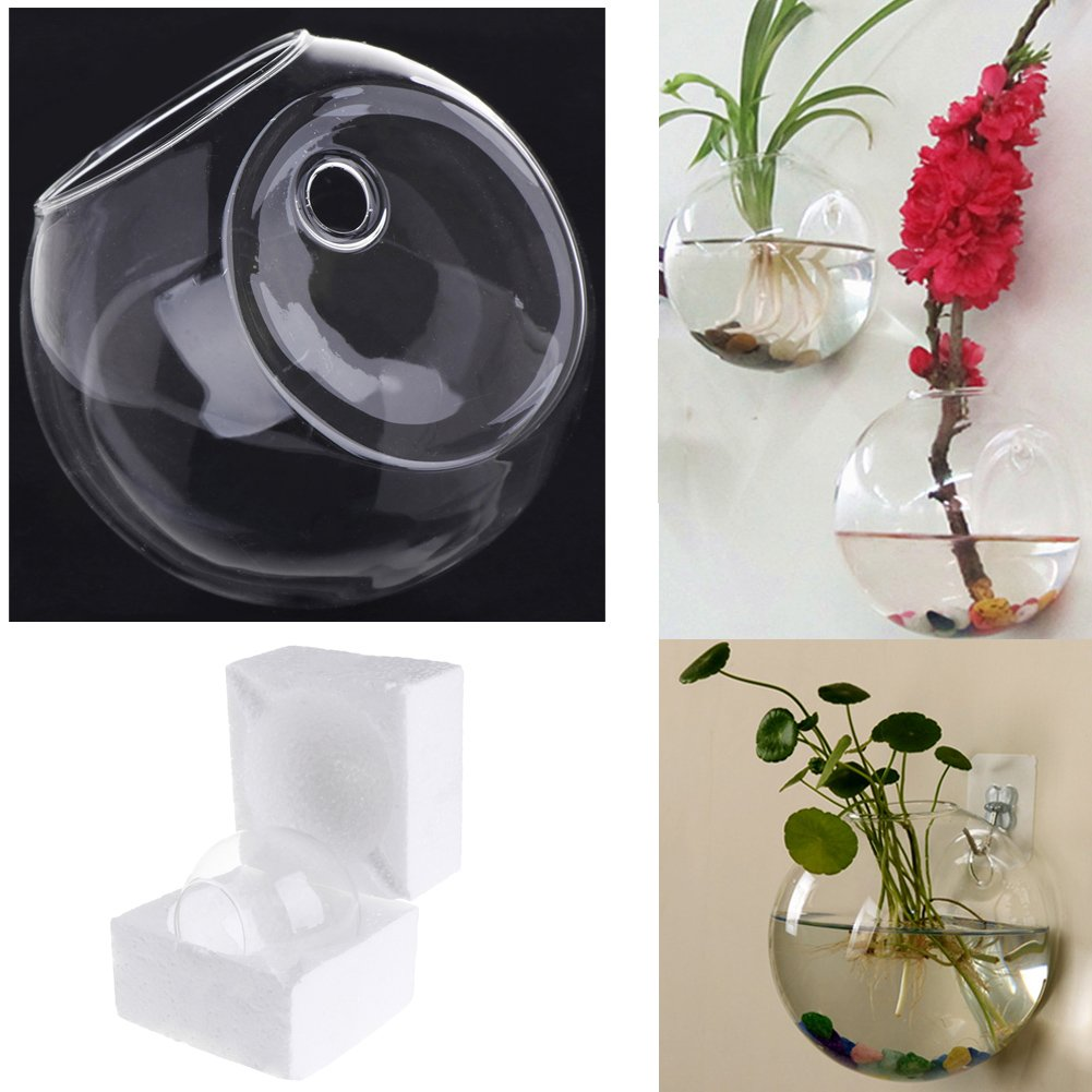 Hacloser Glass Vase for Flower Round Wall Hanging Vase Decor Hydroponic Terrarium Fish Tanks Potted Plant Flower Pot (Diameter 8CM)