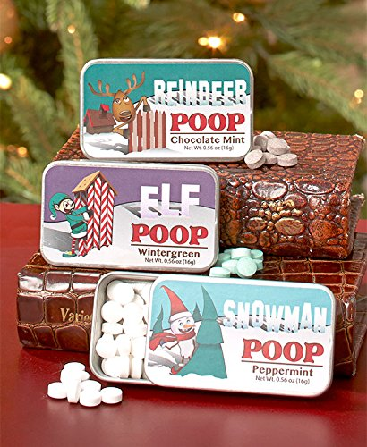 The Lakeside Collection Novelty Mint Tins - Character Poop ()