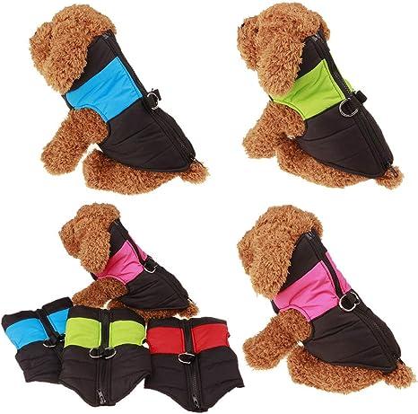 Huhuswwbin cute Little Pet Dog abbigliamento caldo Pet cucciolo di cane impermeabile cappotto giacca invernale gilet imbottiti vestiti con cerniera/ /blu l