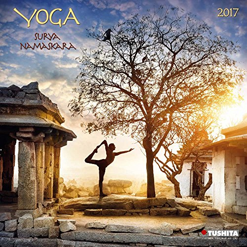 Yoga Surya Namaskara (170174)