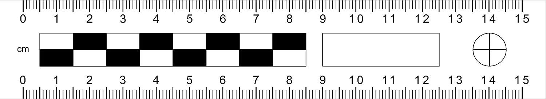 5 cm//XXS Tatortlineal magnetisch