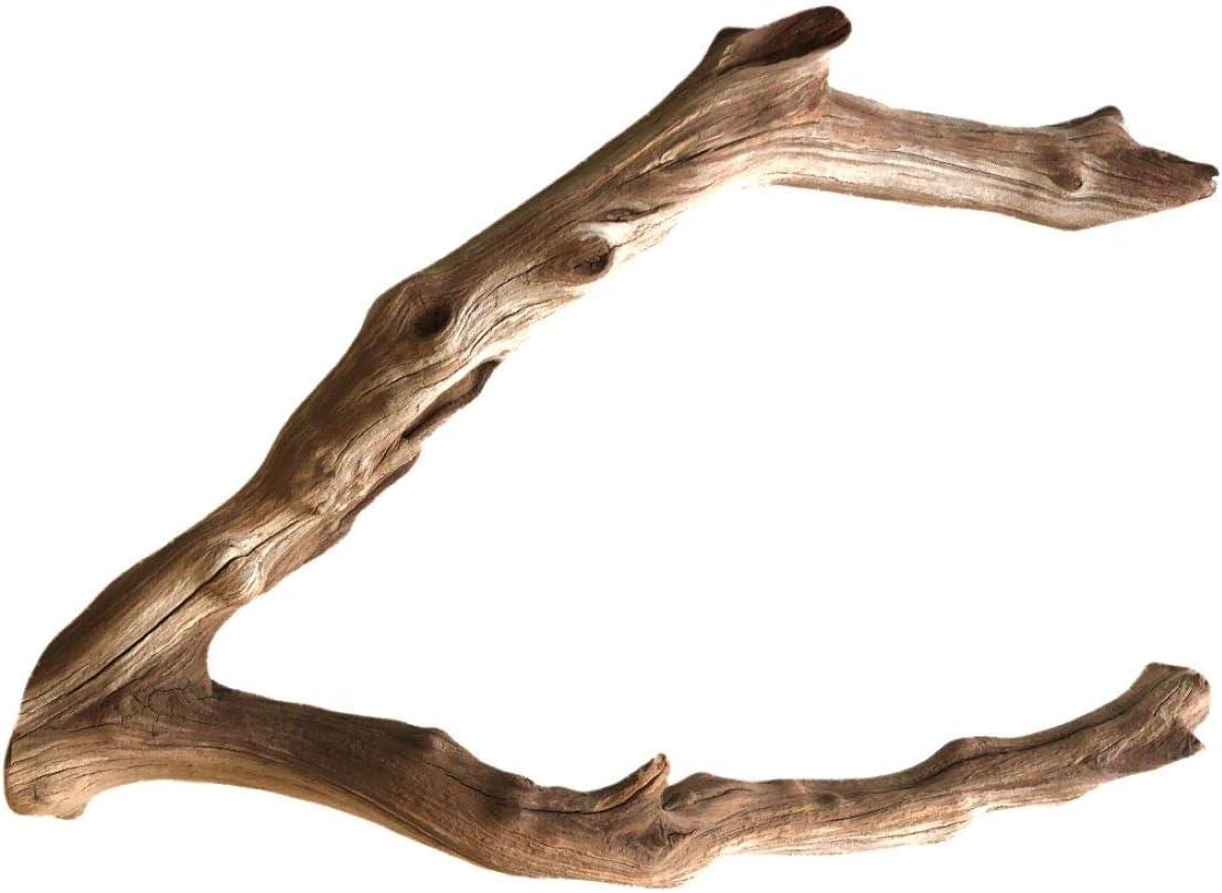 Finn's Forest Branch Manzanita Driftwood for Aquarium Decorations   Driftwood for Reptiles Branch