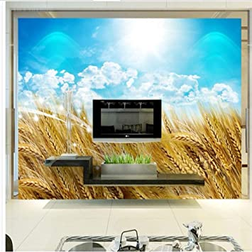 BIZI Pegatinas de pared Papel tapiz Televisor Fondo Dormitorio 3D Original minimalista moderno Campo de trigo Campo de cosecha de trigo TV, 300 * 210 cm,300 * 210 cm,: Amazon.es: Bricolaje y herramientas