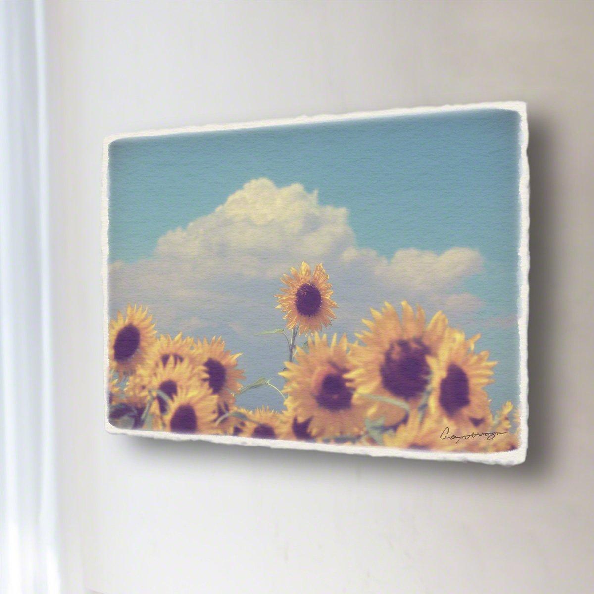 和紙 アートパネル「入道雲と顔を出したヒマワリの花」 (40x30cm) 花 絵 絵画 壁掛け 壁飾り インテリア アート B07F1W2W43 14.アートパネル(長辺45cm) 18800円|入道雲と顔を出したヒマワリの花 入道雲と顔を出したヒマワリの花 14.アートパネル(長辺45cm) 18800円