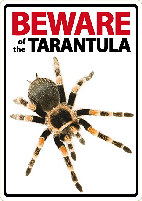 Beware of Attack Tarantula Sign